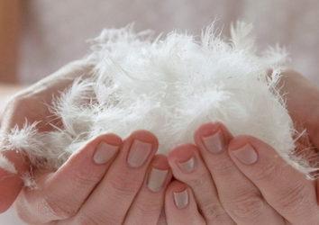 Почему возникает аллергия на пуховые подушки и как с ней бороться?